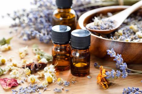 بهترین روش درمان طبیعی برای نیش خارشی حشرات چیست؟