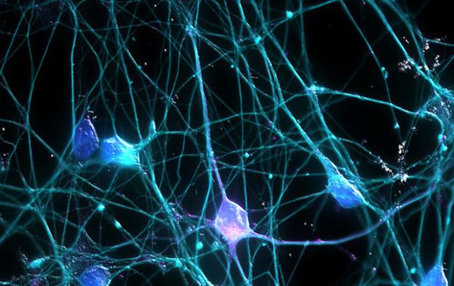 ظهور نشانههای بیماری افراد مبتلا به مالتیپل اسکلروزیس (MS)زودتر از موعد