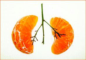 فیبرهای خوراکی و سلامت ریه