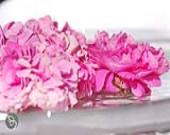 خواص گل سرخ در طب سنتی ایران